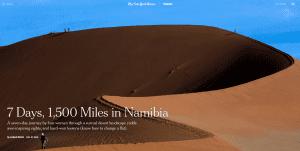 NYT Namibia screenshot Jan 2016