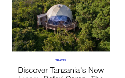 Architectural Digest: Discover Tanzania's New Luxury Safari Camp: The Highlands