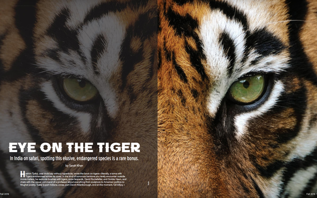 Luxury Magazine: Eye on the Tiger